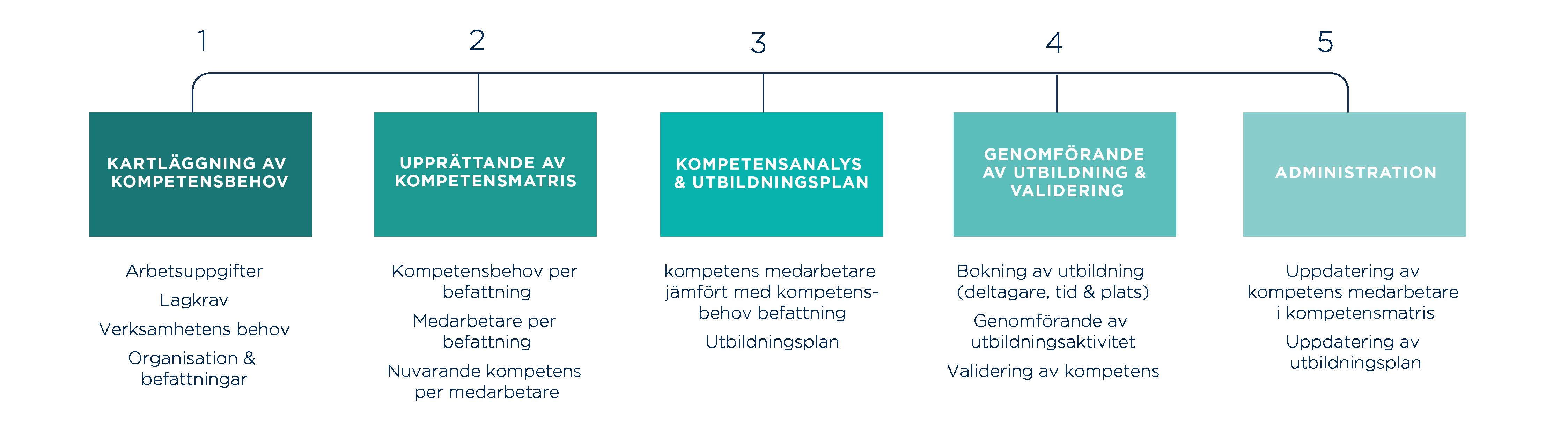 kompetenscoach fem steg
